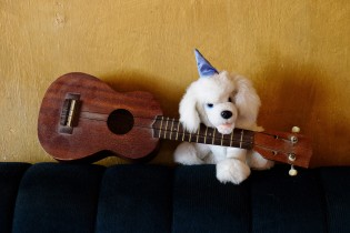 Beatrice choosed 2 objects : A guitar that represents her passion for music and a small dog plush because she loves dogs :))