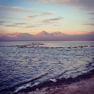 Day 78 - Chile - San Pedro de Atacama – View of the Licancabur volcano from the Laguna Cejar.