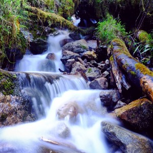 Day 96 – Peru – Inca Trail – Second day on the Inca trail… a trail scattered with waterfalls like this one.
