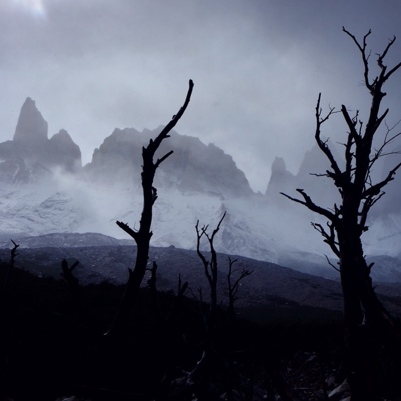 Day 173 – Chile – Torres del Paine – Fourth day on the Torres del Paine trek. An amazing 135 km loop that will take us to mountains, glaciers and a very diverse fauna