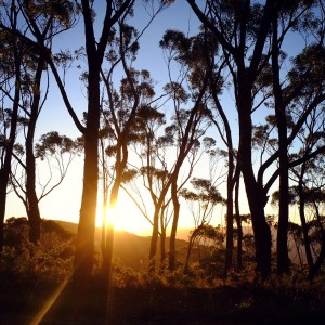 Day 184 – Australia – Blue Mountains – Sunset on the Blue Mountains